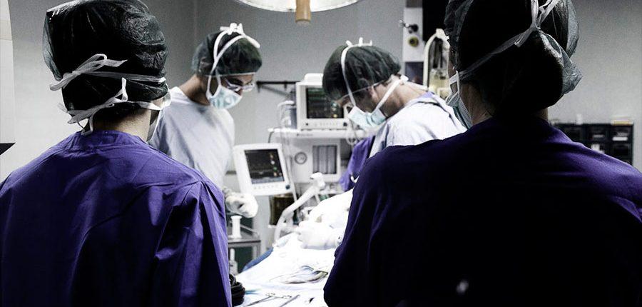 CVRS Policlinico Veterinario Roma Sud | Laparoscopia