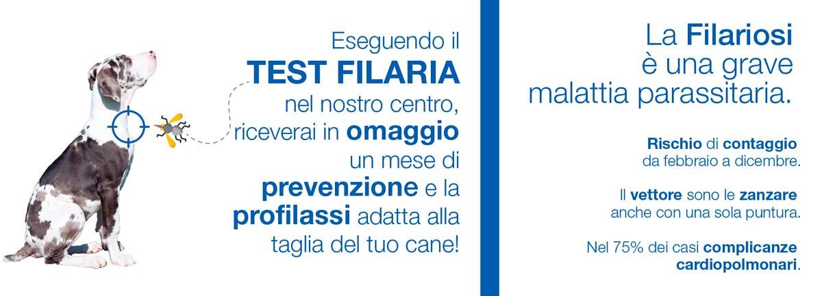 CVRS Policlinico Veterinario Roma Sud   Filariosi prevenzione