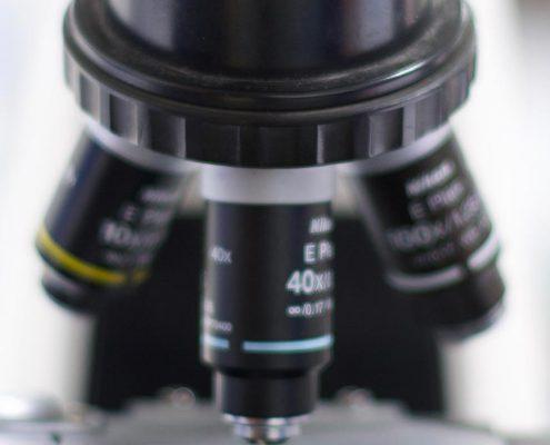 Policlinico Veterinario Roma Sud laboratorio analisi
