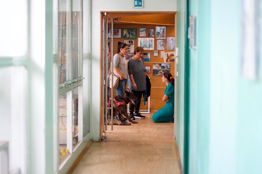 CVRS Policlinico Veterinario Roma Sud | il policlinico struttura