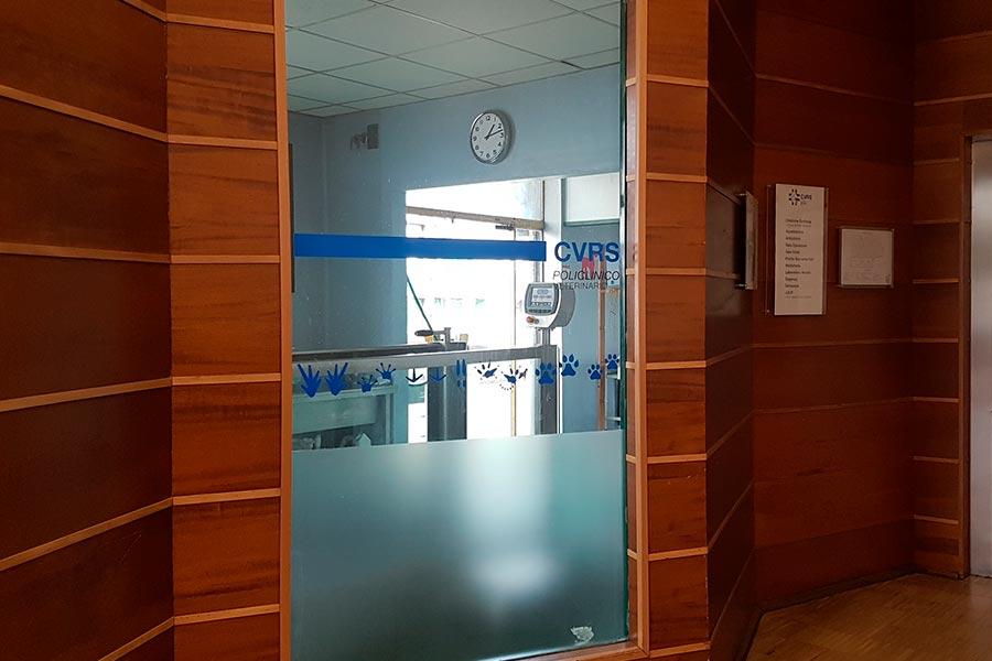 Cvrs Policlinico veterinario Roma Sud | entrata reparto fisioterapia