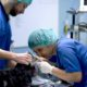 CVRS reparto chirurgia