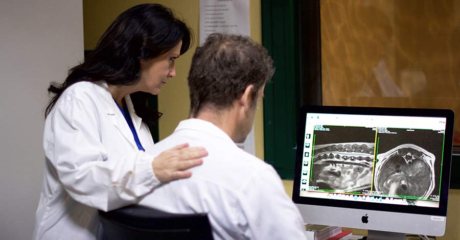 Corso formazionei Neurologia