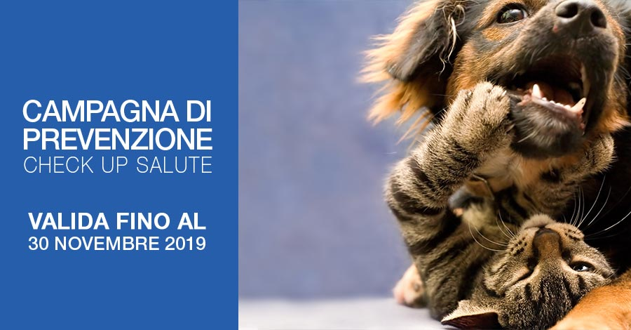 Check up salute Prevenzione animale